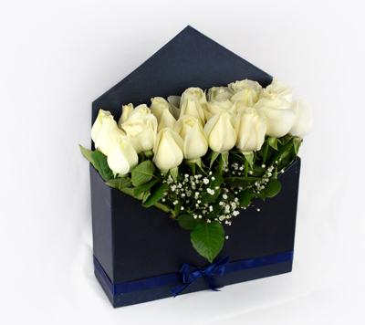 Sobre azul de rosas blancas