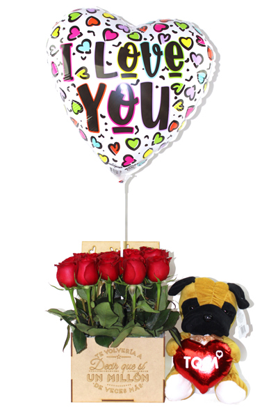 Set Peluche Sorpresa San Valentin