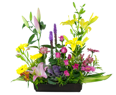 Jardinera mixta con liliz leatrix gerberas