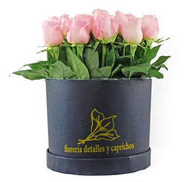 Belleza de Rosas
