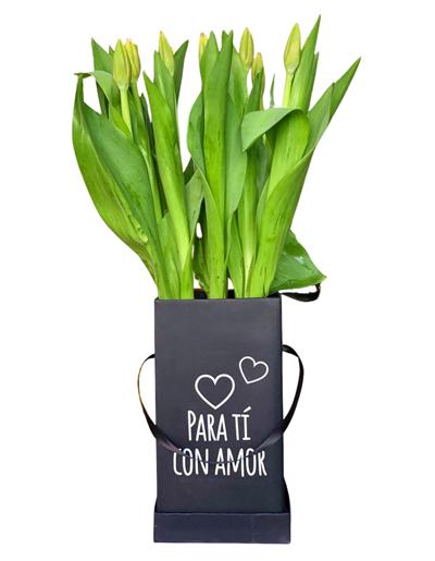 Tulipanes Con Amor