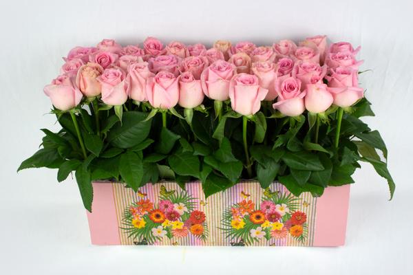 Jardinera palo de rosa