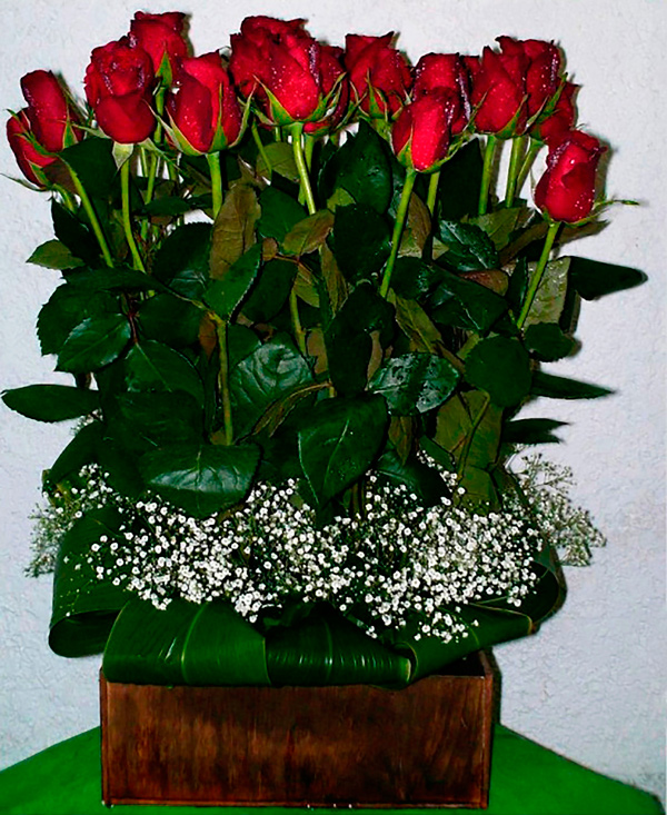 Rosas rojas sembradas en base cuadrada