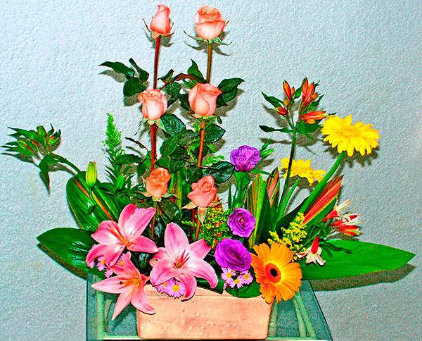 Jardinera con flores mixtas