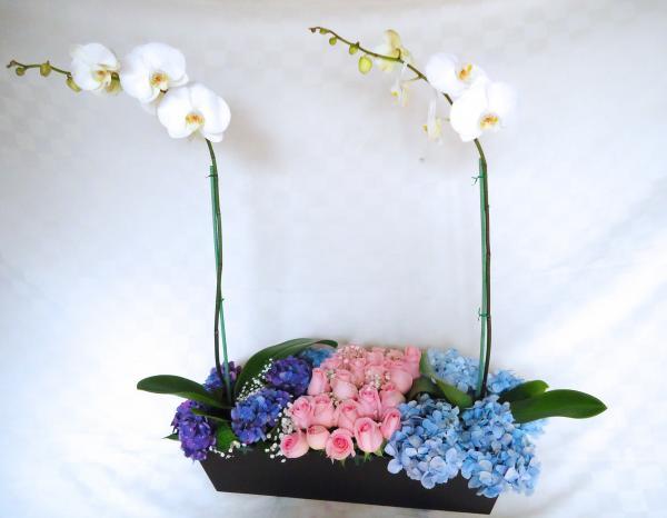 Jardinera orquideas rosas y hortencias