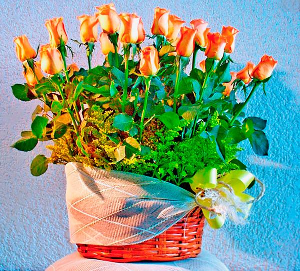 Canasta con dos docenas de rosas color naranja