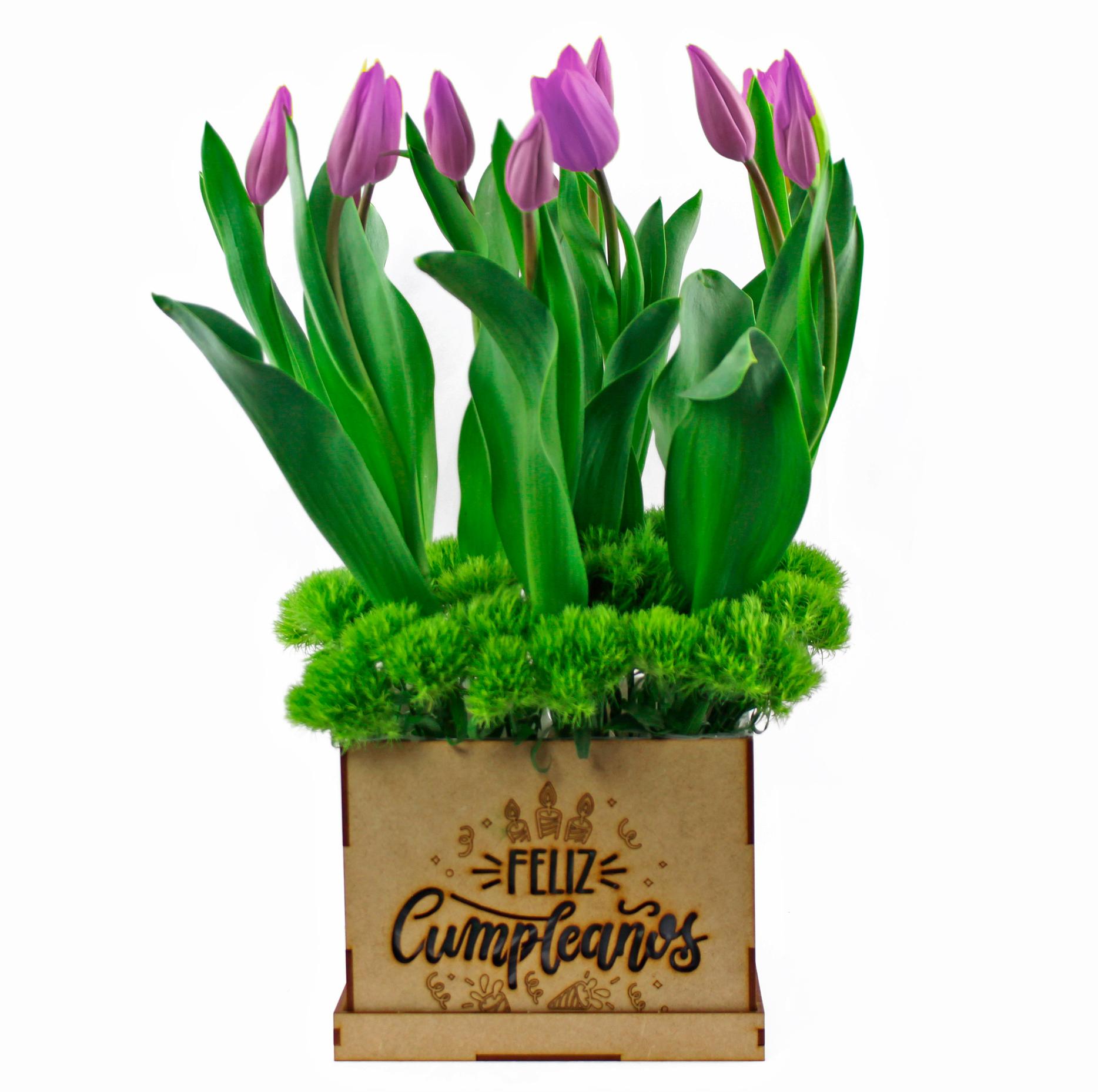 Caja Feliz cumpleaños Tulipanes
